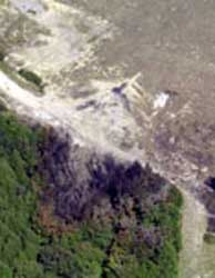 Looking straight down onto the Flight 93 crash site. North is to the top. Note the impact point north of the road, and the burned trees to the south of it.