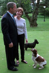 President Bush and Laura Bush with their dogs, Barney and Spot.