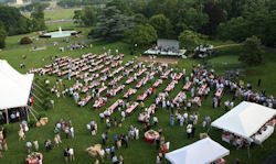The annual Congressional picnic.