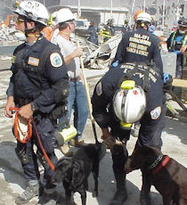 Members of Massachusetts Task Force 1 at Ground Zero.