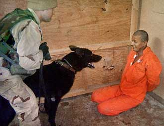 An Abu Ghraib detainee being harassed by a dog.