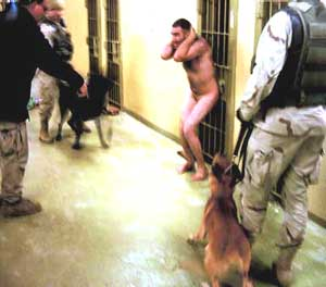 A detainee is attacked by a dog on December 12, 2003.
