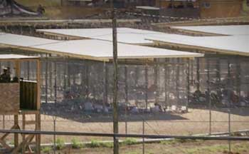 Camp X-Ray. The prisoners are housed in cages pictured.