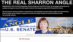 Screenshot from &#8216;The Real Sharron Angle,&#8217; a Web site containing information from Angle&#8217;s previous site and hosted by the Nevada Democratic Party.