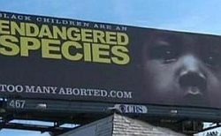 A photo of one of the billboards erected by two Georgia anti-abortion organizations.
