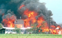 Television news footage of the Branch Davidian conflagration of April 19, 1993.