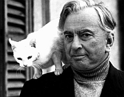 Gore Vidal and friend.