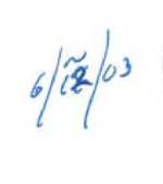 Portion of Libby's notes indicating the approximated date of June 12, 2003.