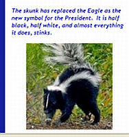 A screenshot from the Hutchinson, Kansas, Patriot Freedom Alliance Web site comparing President Obama to a skunk. The photo and accompanying text was quickly removed after it was reported in a local newspaper.
