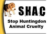 One of several unofficial logos of the Stop Huntingdon Animal Cruelty organization.
