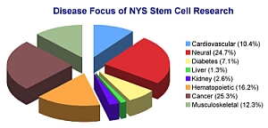 Pie chart showing the focus of New York State's stem cell research.