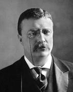 A 1902 portrait of President Roosevelt.